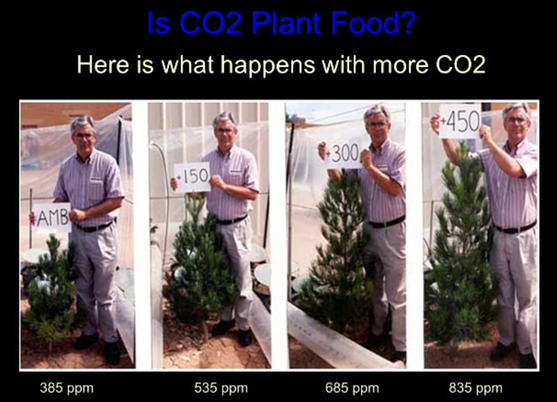 co2_food.png