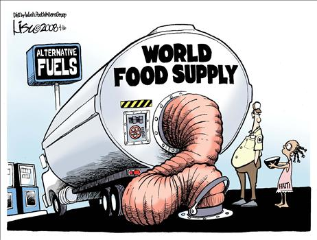 World Food Supply